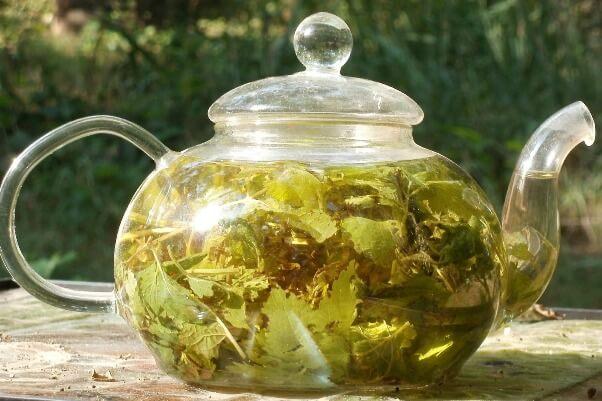 чай при повышенном холестерине